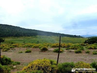Cerro Perdiguera-Sierra Morcuera-Canencia; viajes organizados desde madrid;senderismo doñana